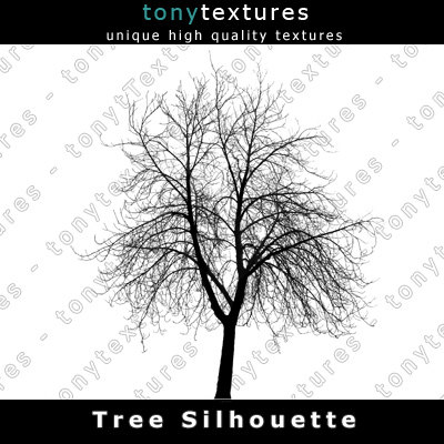 TreeSilhouettes29-A.jpg
