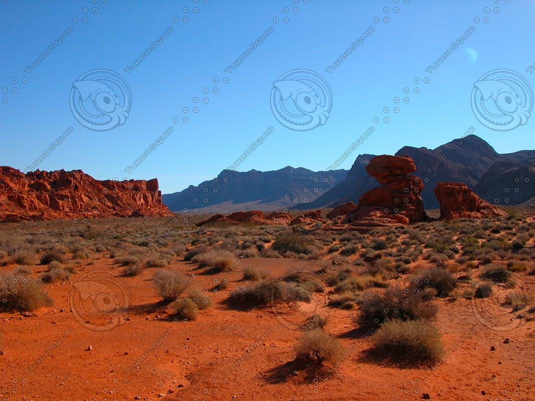 USA_NV_Valley-of-Fire_0356.JPG
