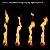 Burning torch footage