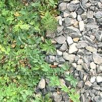 ground_009_1024x768_tileable.jpg