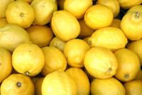 lemons 01.jpg
