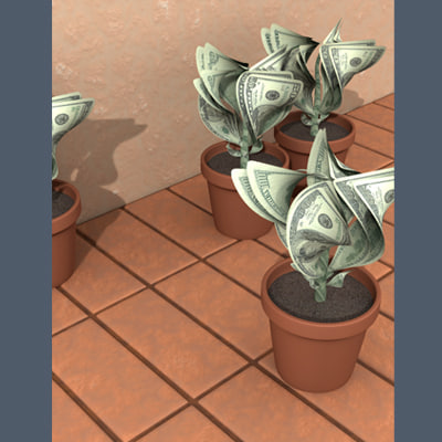 money-plants-ts1.jpg
