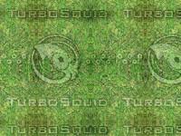 mould_lichen1-green