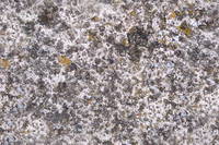 pebble_concrete_01.jpg