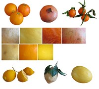 Fruits Textures
