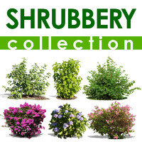 shrubbery collection