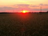 sunset_photo_01.jpg