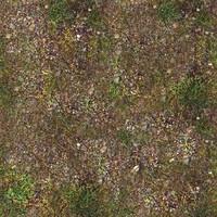 Grassy Infa Tile.bmp
