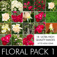 Floral Pack 1