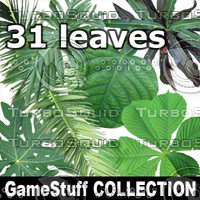 COLLECTION_LEAVES.zip