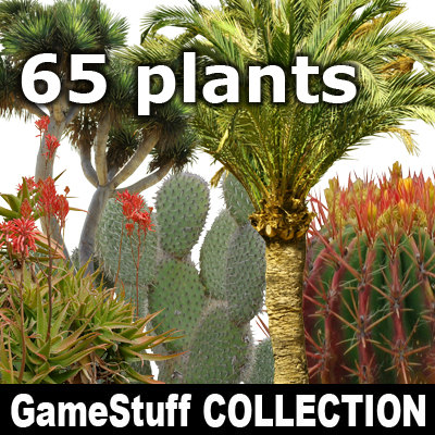 Collection_South_plants.jpg