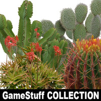 Collection_cactus_p_01.zip