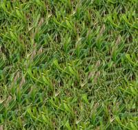 Grass001