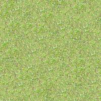 Grass057