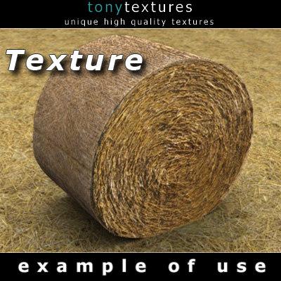 IMG_HayRB-A-texture.jpg