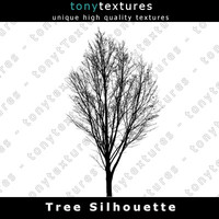 Tree Silhouette 003 - High Res