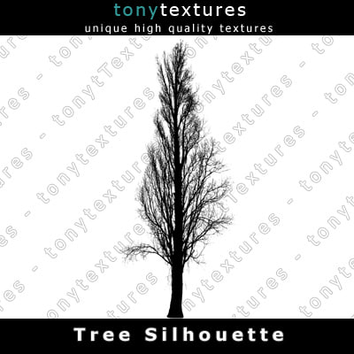TreeSilhouettes20-A.jpg