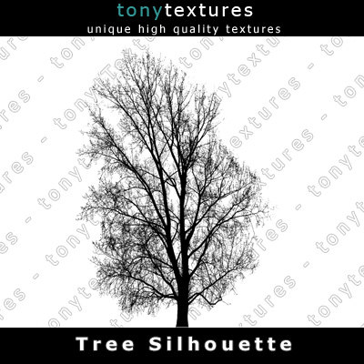 TreeSilhouettes25-A.jpg