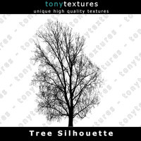 Tree Silhouette 025 - High Res
