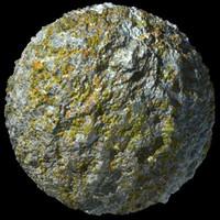 Lichen Stone 2