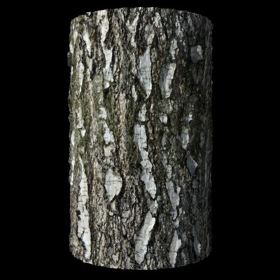 DisplaceIT_TreeBark_Birch_Render.jpg