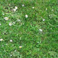 Ground_grass_01.zip
