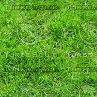 Ground_grass_04.zip