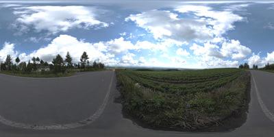 HDR020.jpg
