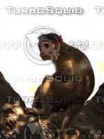 Monkey_4.jpg