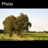 Dutch landscape 2