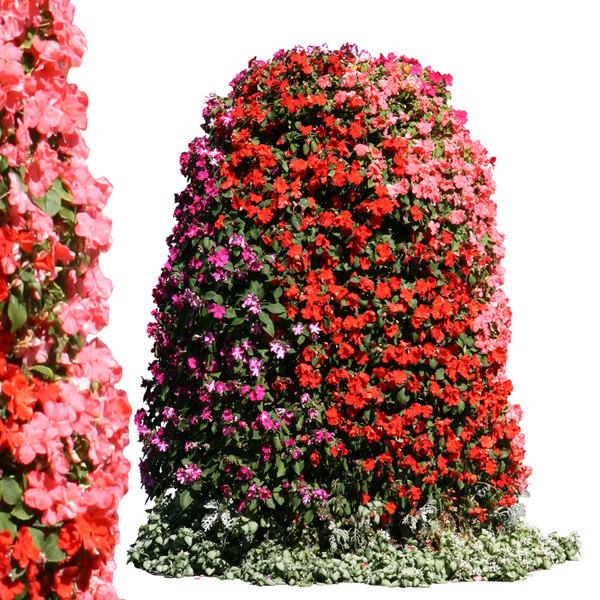 flowers13p.jpg