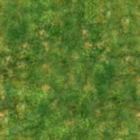 GrassTerrain.jpg