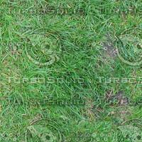 Ground_grass_05.zip