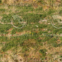 Ground_grass_10.zip
