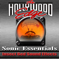 Insect Bed Sound Effects.zip