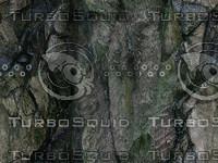 cliff texture 16.jpg