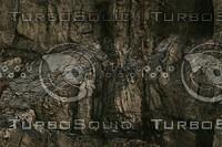 cliff texture 17.jpg