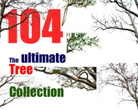 The Ultimate Tree Collection 10