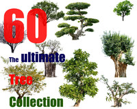 The Ultimate Tree Collection 11
