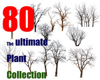 The Ultimate Tree Collection 7