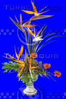 plant_052.jpg
