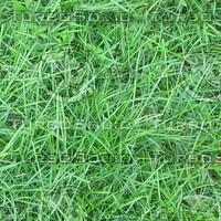 Ground_grass_06.zip