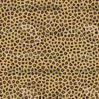 Leopard Fur Textures.rar