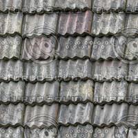 Roof texture 56a2.jpg
