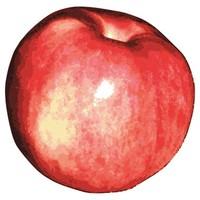 SPV_Apple001