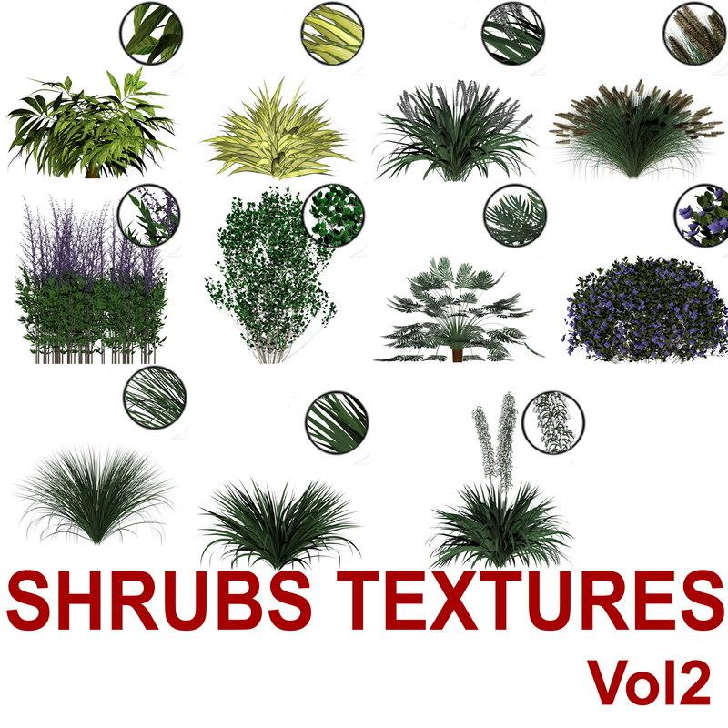 Shrubs_Textures_Vol2.jpg