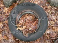 Tire In Leaves.JPG