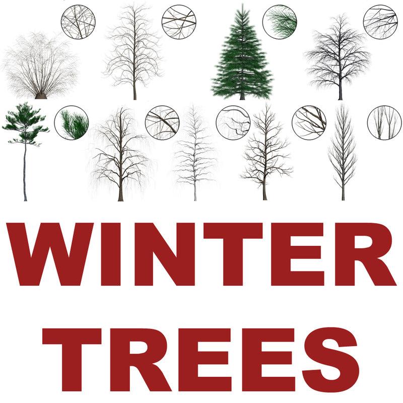 Winter_trees_main.jpg