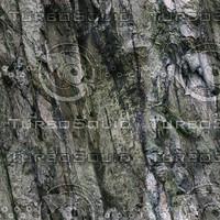 cliff  texture 1 seamless.jpg