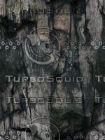 cliff texture 36.jpg